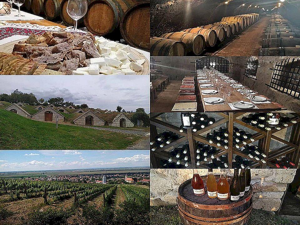 Zážitkový výlet do Tokaje pro 2 osoby, 4 dny, 3 noci, *** rodinný pension, cena pro 1 osobu 8 100,- Kč (Gastronomické, historické a vinné toulky Tokajským vinařským regionem s jediným českým historikem a amaterským vinařem zde žijícím!)