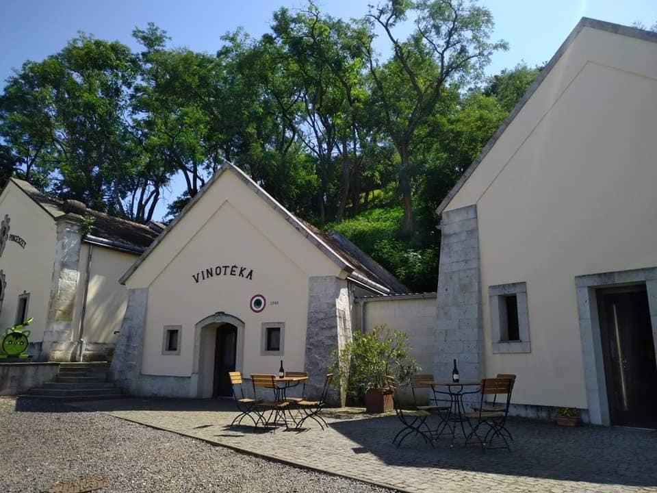 Zážitkový výlet do Tokaje pro 3 osoby, 4 dny, 3 noci, *** rodinný pension, cena pro 1 osobu 7 500,- Kč (Gastronomické, historické a vinné toulky Tokajským vinařským regionem s jediným českým historikem a amaterským vinařem zde žijícím!)